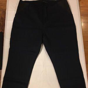 LIZA LUXE Navy Dressy Pants 2X